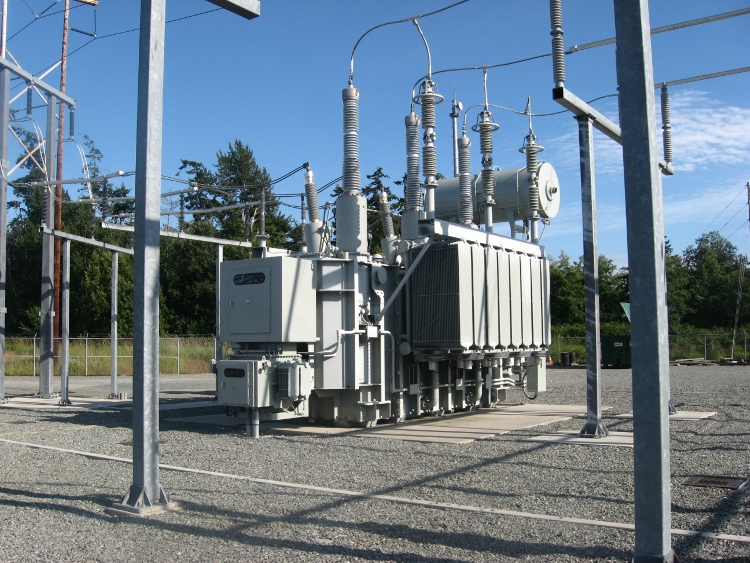 Puget Sound Energy (major electric utility)(1)